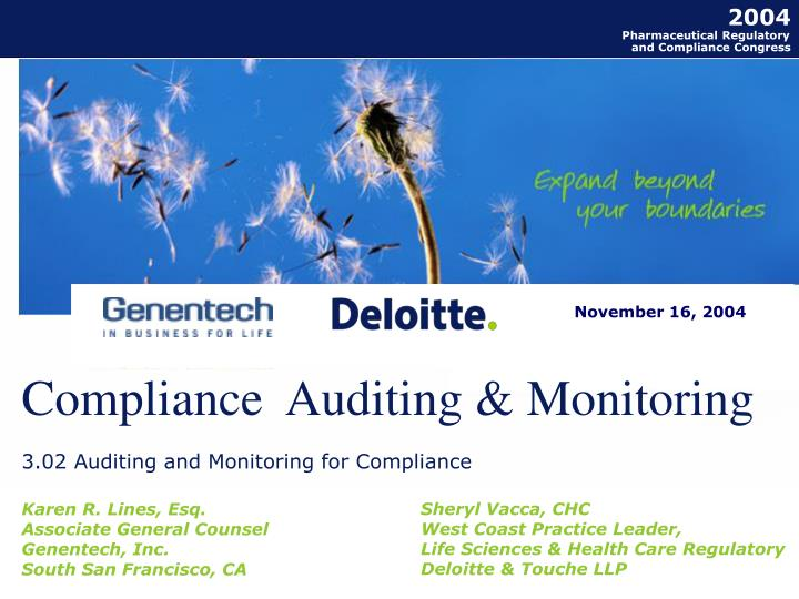 compliance auditing monitoring n.