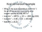 kcal conversion example