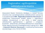 regionalne i og lnopolskie oddzia ywanie klastra