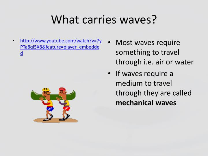 What carries waves?
