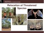 relocation of threatened species
