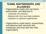 teams partnerships and alliances