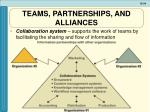 teams partnerships and alliances1