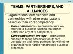 teams partnerships and alliances2