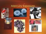 mercury exposure