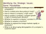 identifying the strategic issues some possibilities