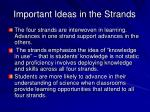 important ideas in the strands