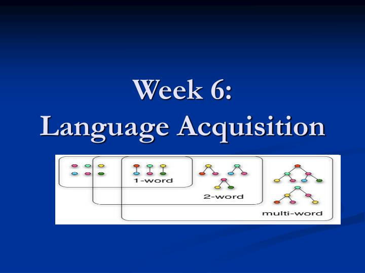 week 6 language acquisition n.