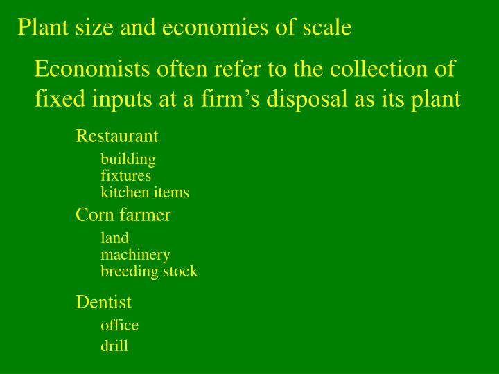 Plant size and economies of scale
