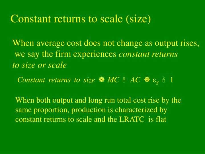 Constant returns to scale (size)