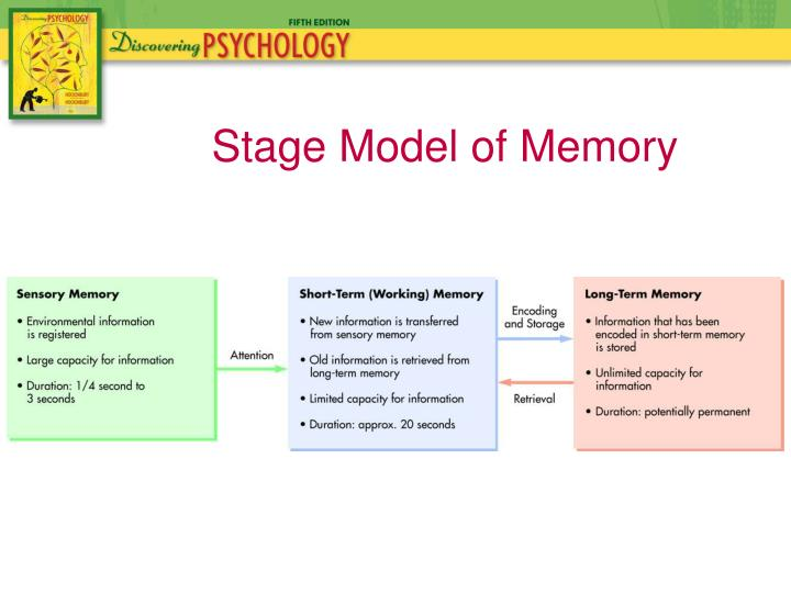the multistore model of memory One of the classic models of how memory works and how we are able to recall information is the multi store model of memory which was developed by atkinson and shiffrin in the 1960's this model.
