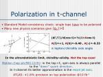 polarization in t channel