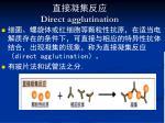 direct agglutination