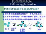 indirect agglutination