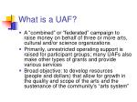 what is a uaf