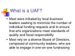 what is a uaf2