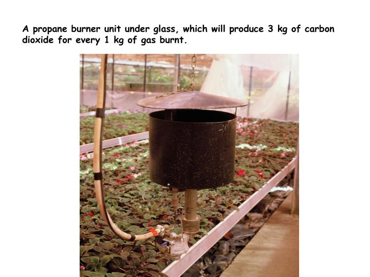 A propane burner unit under glass, which will produce 3 kg of