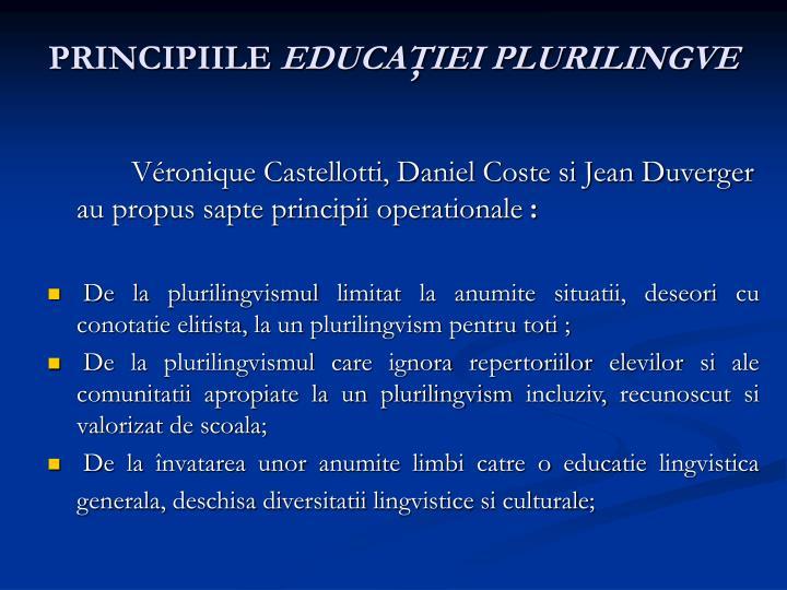 PRINCIPIILE