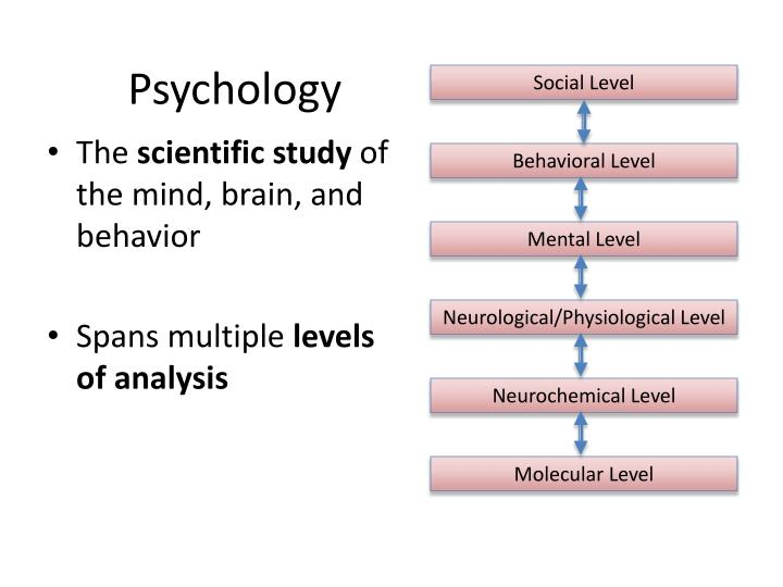 psychology is the scientific study of Visual information processing is the visual reasoning skill that enables us to process and interpret meaning from visual information that we gain through our eyesight visual perception plays a big role in our everyday life.