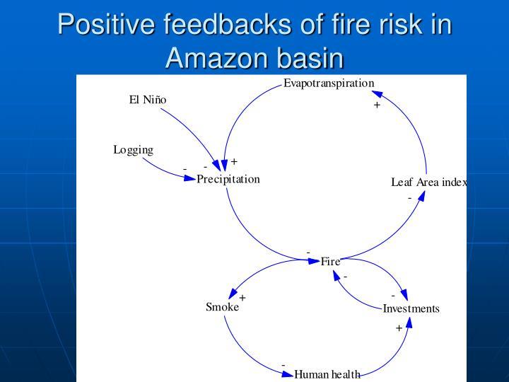 Positive feedbacks of fire risk in Amazon basin