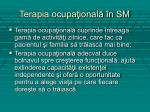 terapia ocupa ional n sm