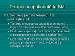 terapia ocupa ional n sm1