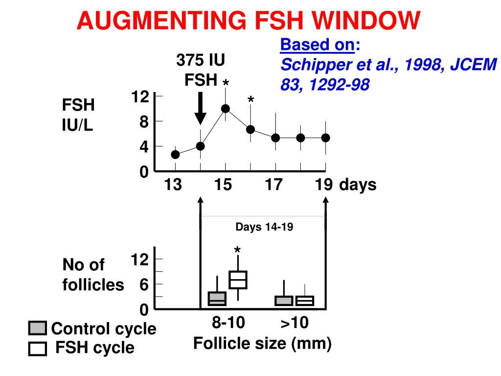 PPT - PHYSIOLOGY OF FOLLICULOGENESIS PowerPoint Presentation
