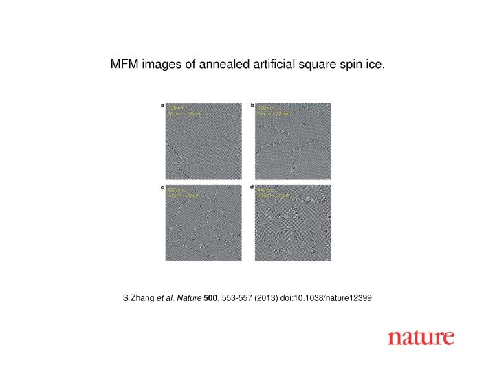 MFM images of annealed artificial square spin ice.