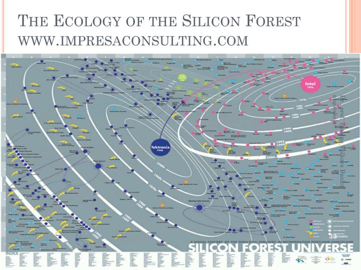 The Ecology of the Silicon