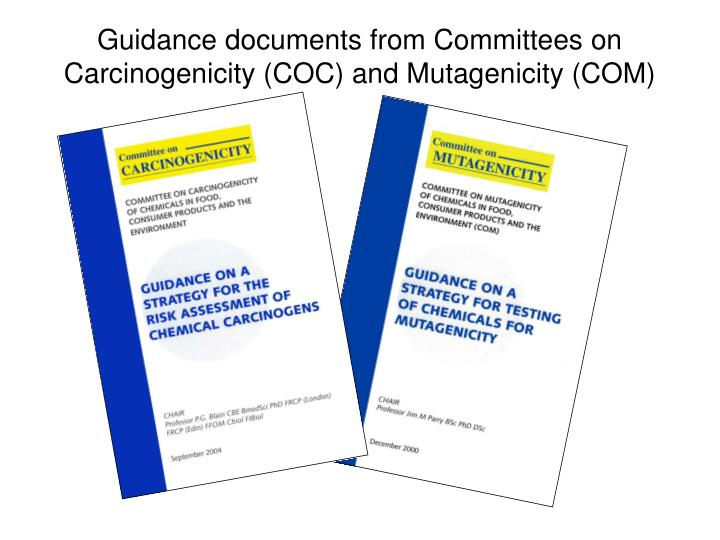 Guidance documents from committees on carcinogenicity coc and mutagenicity com