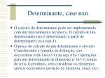determinante caso nxn1