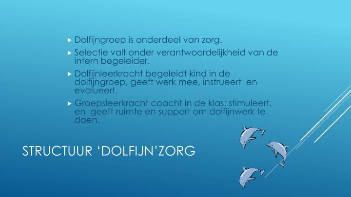 Structuur dolfijn zorg