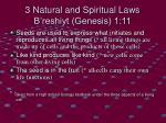 3 natural and spiritual laws b reshiyt genesis 1 11