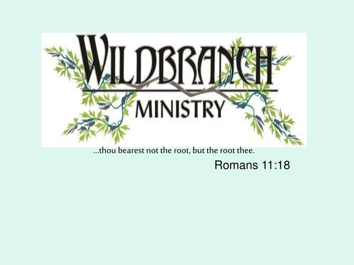 thou bearest not the root but the root thee romans 11 18 n.