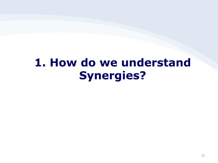 1. How do we understand Synergies?