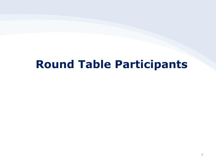 Round table participants