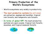 primary production of the world s ecosystems