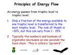 principles of energy flow