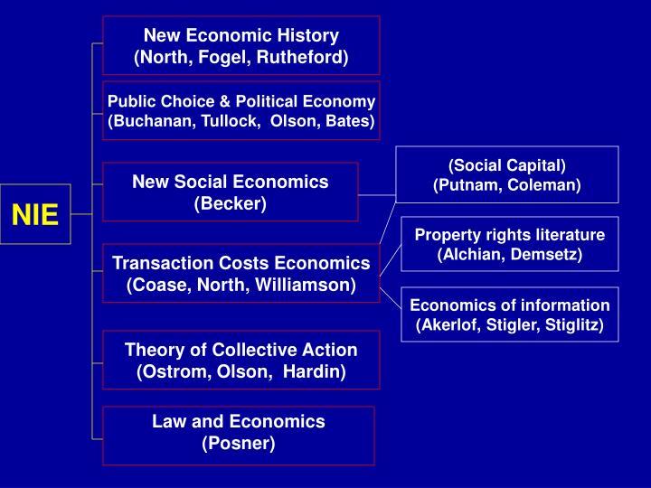 New Economic History