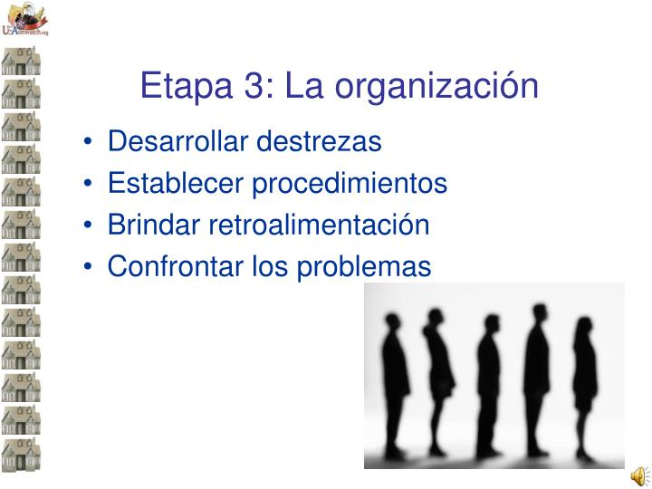 Etapa 3: La organización