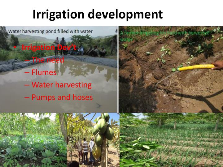 Irrigation development