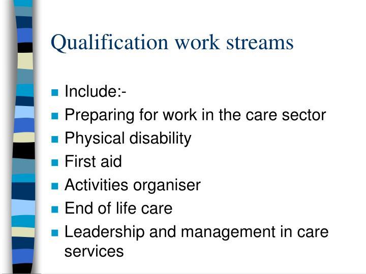 Qualification work streams