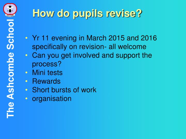 How do pupils revise?