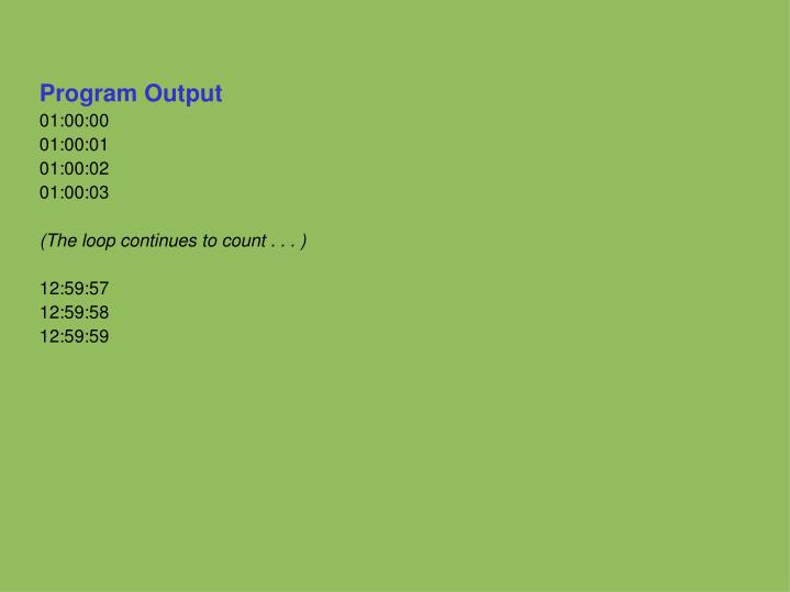 Program Output