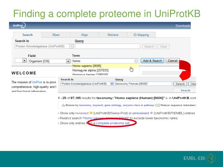 Finding a complete proteome in UniProtKB