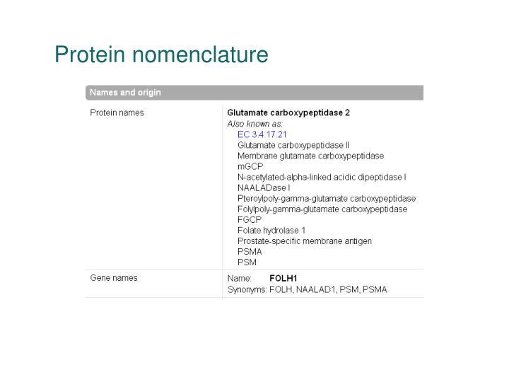 Protein nomenclature