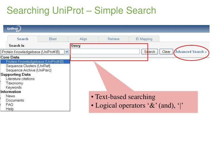 Text-based searching