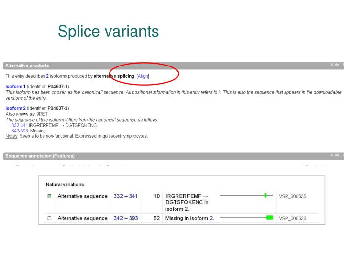 Splice variants