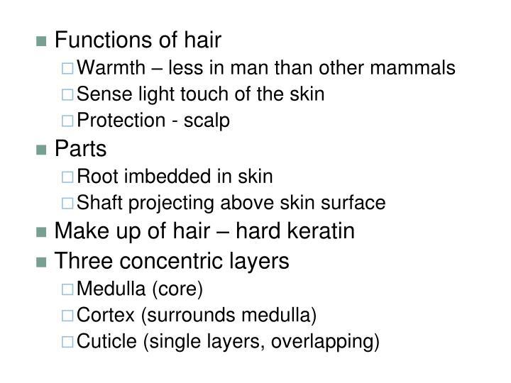 Functions of hair