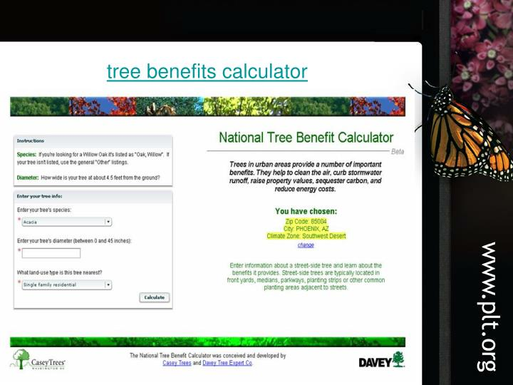 tree benefits calculator